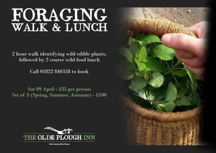 Foraging Walk and Lunch