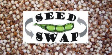 First Tavistock Seed Swap at Local Matters – April 2017