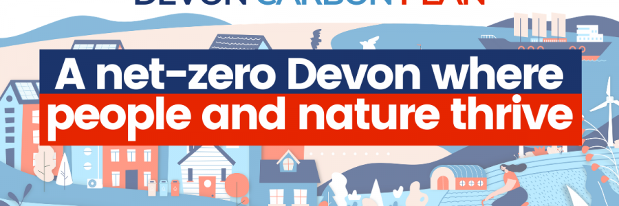 Interim Devon Carbon Plan